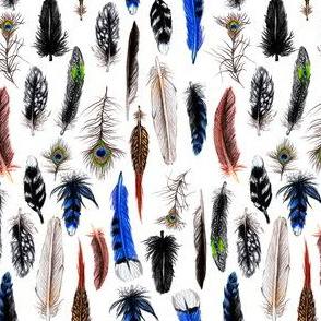 Little Feathers