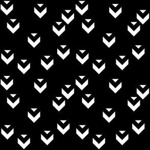 SouthWestern Birds W+B