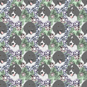 Floral Parti colored Standard Poodle portraits