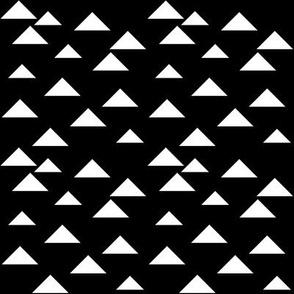 SouthWestern Triangles W+B