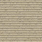 genome-06