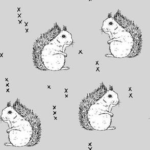 Squirrels_lightgrey