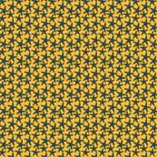 yellowstarfish_42_
