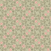 Old Fashioned Pink Roses on textured ground