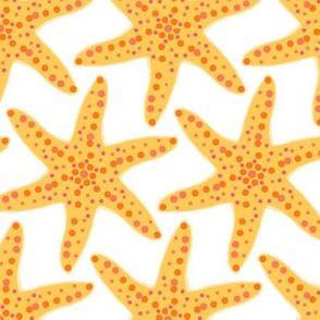 Yellow Starfish on White