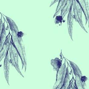 Eucalypt in Mint