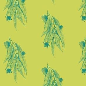 Eucalyptus on Green