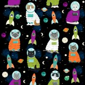 Rspace_cats_shop_thumb