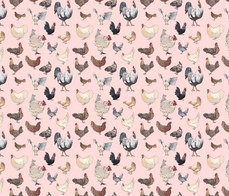 Rmasterchickhap-pink-01_shop_preview