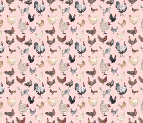 Chicken Happy in Pink fabric by normajeane on Spoonflower - custom fabric