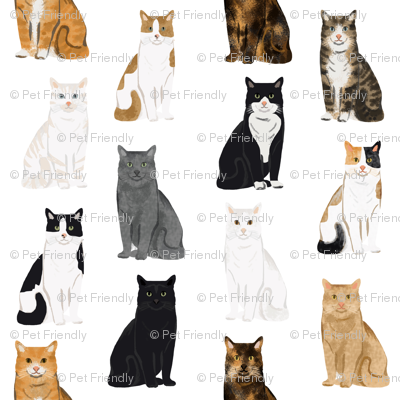 Cats fabric pattern cat breeds