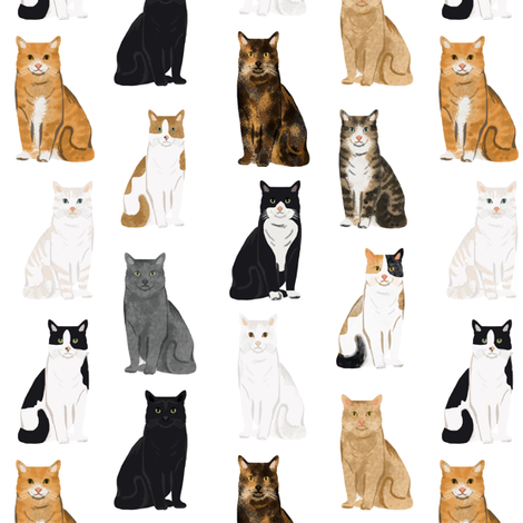 Cats fabric pattern cat breeds  fabric by petfriendly on Spoonflower - custom fabric