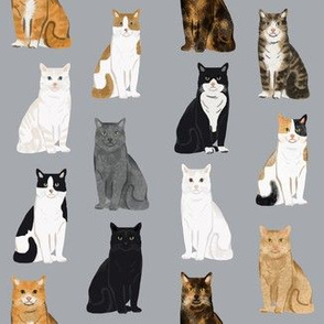 Cats fabric pattern cat breeds 3