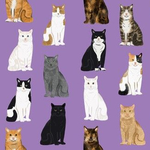 Cats fabric pattern cat breeds 7