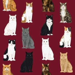 Cats fabric pattern cat breeds 8