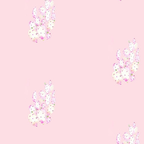 pink_cactus_alone