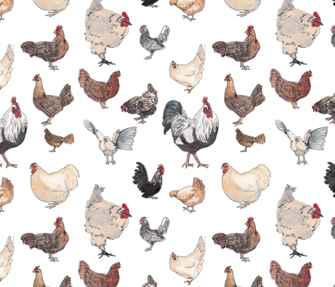Crazy for Chickens fabric by normajeane on Spoonflower - custom fabric