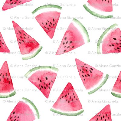 watercolor watermelon slices