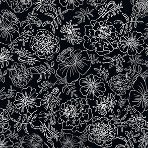 Marigolds_white on black