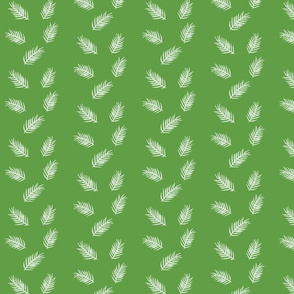 Ferns on Green