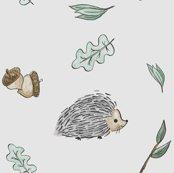 Rhedgehog-white_shop_thumb