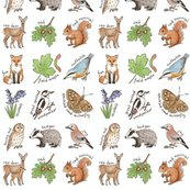 British_woodland_wildlife_smaller_4_inch_wide_150_hazel_fisher_creations_shop_thumb