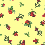 cranberries_yellow background
