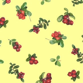 cranberries_yellow background