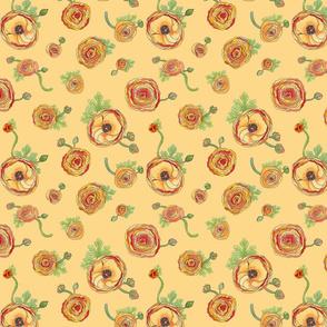 Ranunculus - Peach