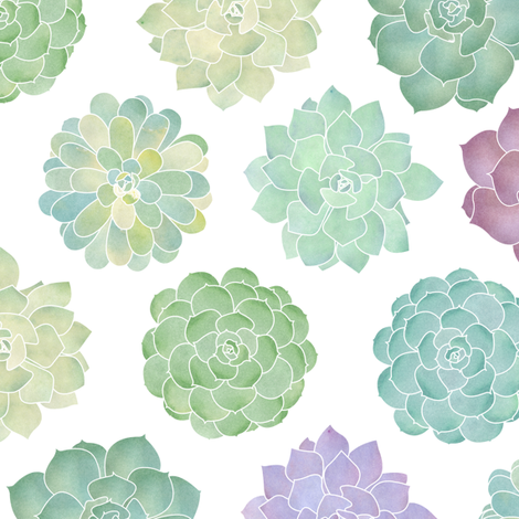 Watercolor Succulent Garden fabric by jannasalak on Spoonflower - custom fabric