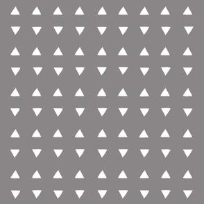 Tiny Triangles - Titanium