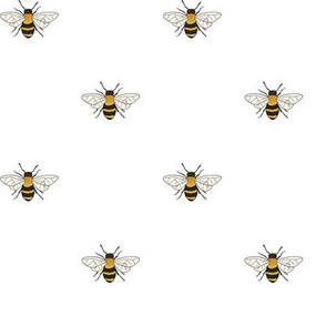 Bees on white