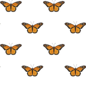 Monarch Butterfly - simple repeat on white