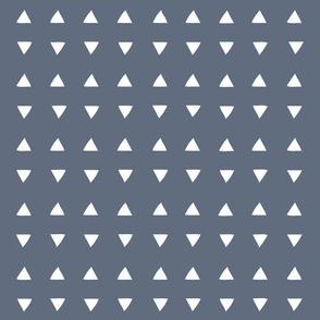 Tiny Triangles - Lagoon fp