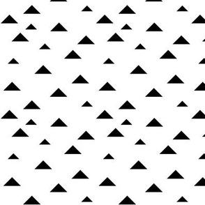 SouthWestern Triangles B+W2