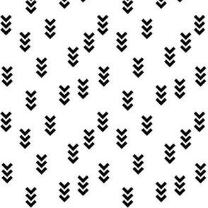 SouthWestern Arrows B+W2
