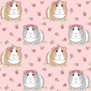 medium guinea-pigs-with-roses