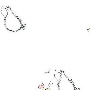 Ludwig and friends voor Kaat