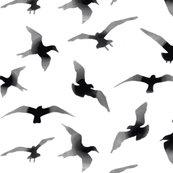 Rrrflyingbirdpattern_shop_thumb