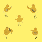 Chicken Band on Yellow