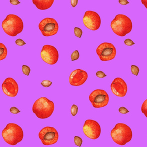 apricots_and_apricot_seeds