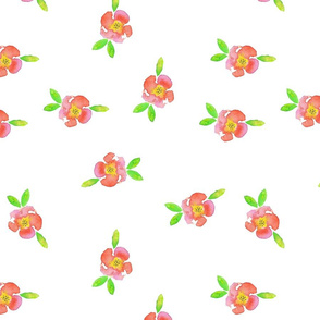 small_flowers_rose