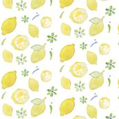 summer yellow lemon