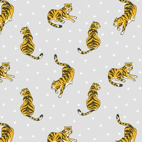 Cute tigers and triangles