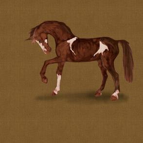 Pinto Horse for Pillow