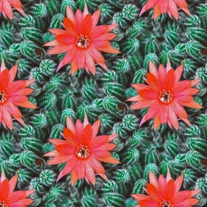 cacti - painting effect