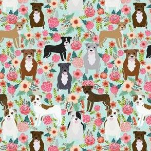 pitbull pitbull terriers cute dogs dog sweet animals florals mint dog pets