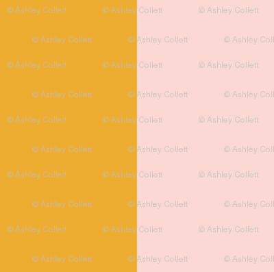 "3"" Bold Pink & Mustard Stripe"