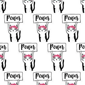 "2"" Pussy Power"