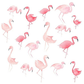 Watercolor Pink Flamingos